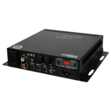 Episode® Digital Subwoofer Mini Amplifier | 100W x 1 Channels