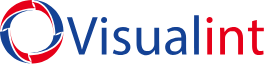 Visualint logo