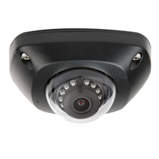 Luma Surveillance™ 300 Series Mini Dome IP Outdoor Camera | Black