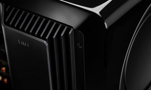 Zoomed-in view of subwoofer